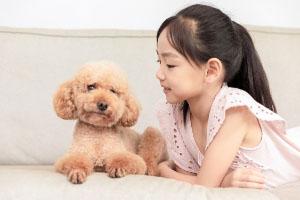 儿童保险咨询