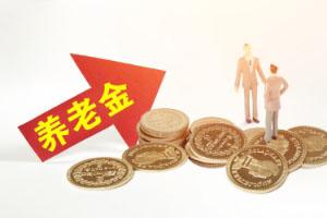 商业养老保险的主要特点有哪些?