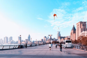 旅游保险合同的主要条款有什么