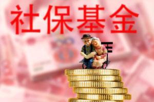 养老保险补缴流程介绍