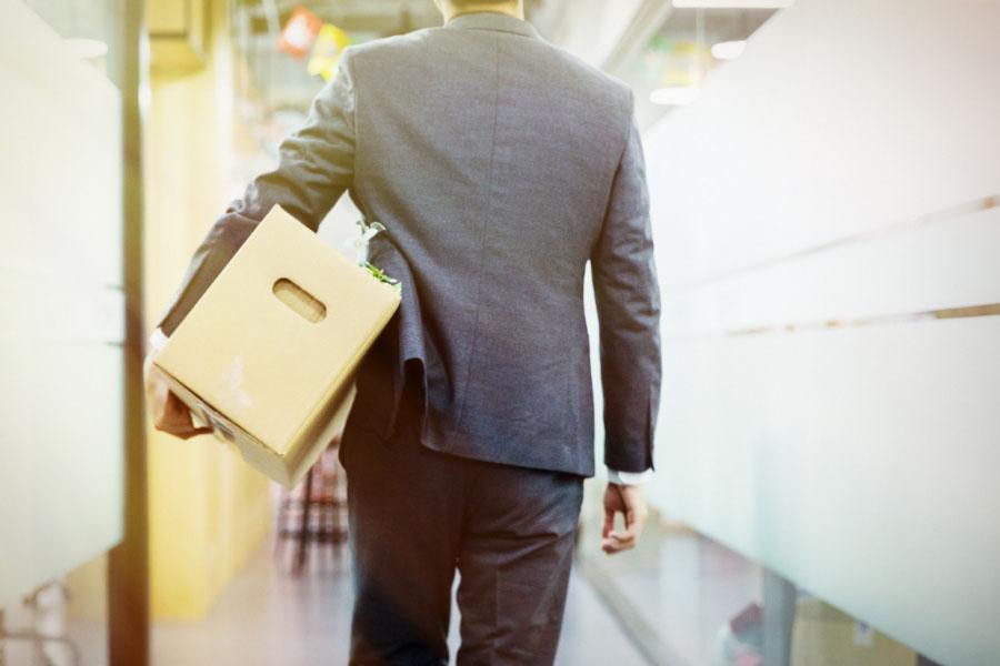 失业保险缴费比例与失业金领取材料