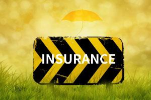 海外投资保险